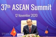 印度教授:美国通过越南担任东盟轮值主席国的作用与东盟加强合作