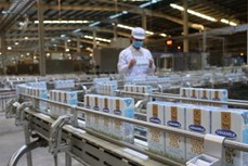 越南新增两家公司获授向中国出口乳制品的交易代码