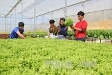 太原高科技农业园区建设项目正式获批
