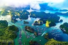 """越南""""下龙湾-吉婆群岛""""申请成为世界遗产的档案完善"""