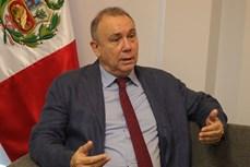 秘鲁驻越大使高度评价越南的国际角色