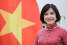 越南支持并祝贺伊维拉担任世贸组织新任总干事