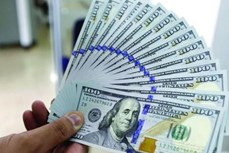 3月1日上午越盾对美元汇率中间价下调15越盾
