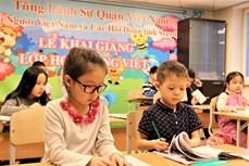 海外越南人:通过越南语教学维护与发挥民族文化特色