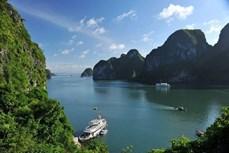 外国油管博主推广越南旅游形象