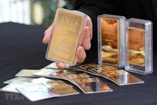 今日上午越南国内市场黄金价格持续下跌