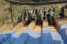 促进越美在解决战争遗留问题中的合作
