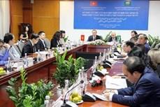为越南与沙特阿拉伯双边关系抚平道路