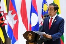 印尼与柬埔寨促进卫生、经济、投资和防务等领域的合作
