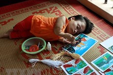 越南橙剂/迪奥辛受害者协会:将继续支持陈素娥起诉美国化学公司案