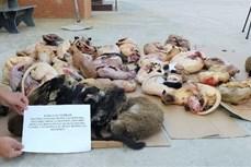 新冠肺炎疫情:从严遏制贩卖野生动物行为