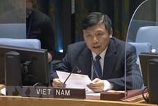 越南与联合国安理会:越南主持召开联合国安理会国际法院非正式工作组会议 承诺促进对话进程
