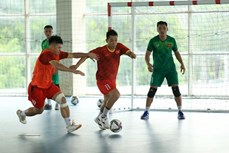 2021 年国际足联五人制足球世界杯:24日晚越南五人制足球队启程前往西班牙