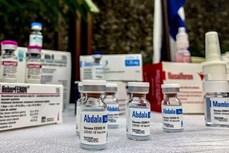越南卫生部有条件批准 Abdala新冠疫苗
