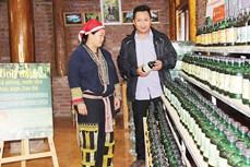 Lào Cai khuyến khích trao quyền cho phụ nữ dân tộc thiểu số trong phát triển kinh tế - xã hội