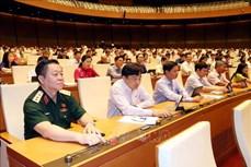 Kỳ họp thứ 9, Quốc hội khóa XIV: Kéo dài thời hạn miễn thuế sử dụng đất nông nghiệp đến hết ngày 31/12/2025