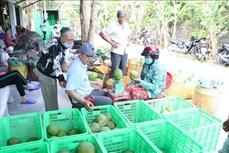Hiệp định EVFTA nâng cao chuỗi giá trị gia tăng nông sản Việt