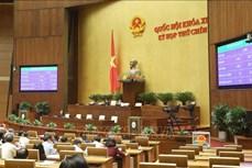 Kỳ họp thứ 9, Quốc hội khóa XIV: Chủ tịch Quốc hội Nguyễn Thị Kim Ngân được bầu giữ chức Chủ tịch Hội đồng bầu cử quốc gia