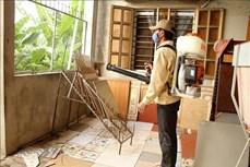 Tiền Giang: Tăng cường phòng chống sốt xuất huyết, bảo vệ sức khỏe nhân dân