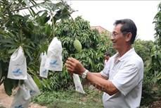 Bà đỡ cho nông nghiệp sạch