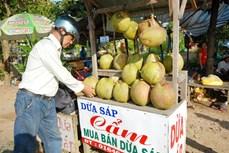 Nâng cao giá trị cho đặc sản dừa sáp Trà Vinh