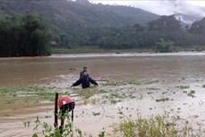 Mưa lớn gây ngập úng một số tuyến đường ở thành phố Lào Cai