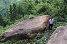 """Phát hiện """"siêu phẩm"""" ruộng bậc thang khắc trên đá cổ ở Mù Cang Chải"""