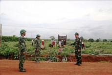 Bộ đội Biên phòng Tây Ninh - Lá chắn thép phòng, chống dịch COVID-19 trên tuyến biên giới