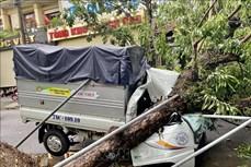 Bão số 5 đổ bộ vào đất liền, một số địa phương đã ghi nhận thiệt hại
