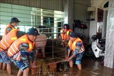 Tập trung ứng phó với bão số 8 và cứu trợ khẩn cấp nhân dân vùng lũ