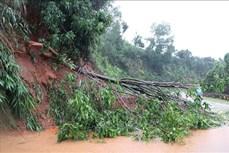 Đắk Lắk: Một người tử vong do ảnh hưởng bão số 9