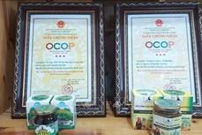 Chương trình OCOP góp phần tạo nên chuỗi giá trị sản phẩm nông nghiệp của Hà Giang