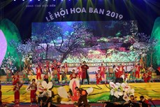 Điện Biên không tổ chức Lễ hội Hoa Ban để đảm bảo công tác phòng, chống dịch COVID-19