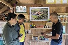 Gia Lai: Hợp tác xã nông nghiệp -  Đòn bẩy giúp nông dân nâng cao giá trị sản phẩm