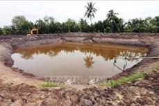 Tích trữ nước ngọt, phòng trừ sâu bệnh cho lúa Đông Xuân