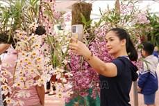"""Hơn 1.000 giò lan khoe sắc tại triển lãm """"Hương sắc Lai Châu"""""""