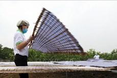 Bắc Giang hỗ trợ hơn 309 tỷ đồng cho khuyến công giai đoạn 2021 - 2025