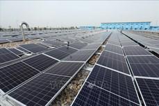 Trên 9.500 tỷ đồng xây dựng nhà máy điện mặt trời trên hồ Ia Ly