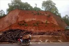 Yên Bái: Sạt lở đất khiến một phụ nữ tử vong