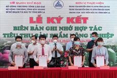 Ba tỉnh Lào Cai, Sơn La và Bắc Giang hợp tác xúc tiến tiêu thụ nông sản