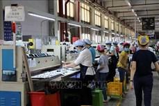 """Bảo hiểm xã hội Việt Nam khẩn trương """"vào cuộc"""" hỗ trợ người lao động, doanh nghiệp khó khăn do COVID-19"""