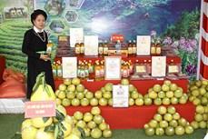 Yên Bái nâng cao chất lượng, mở rộng thị trường tiêu thụ sản phẩm OCOP