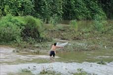 Điện Biên: Khuyến cáo người dân không đi đánh bắt tôm, cá trên sông, suối trong mùa mưa lũ
