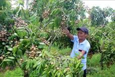 Ông Trịnh Văn Toàn làm giàu nhờ mô hình trang trại tổng hợp