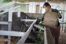 Lai Châu giảm nghèo bền vững