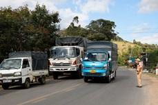 Lâm Đồng áp dụng phần mềm di biến động dân cư chung cho lái xe và người dân ra, vào vùng dịch
