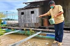 Lão nông Lý Văn Bon thành công với mô hình nuôi cá lồng bè kết hợp du lịch