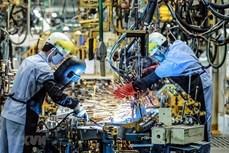 麦肯锡咨询公司高度评价越南经济复苏能力