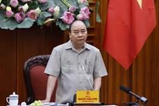阮春福总理:确保统计数据的准确性绝不贴金也不抹黑