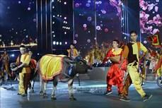越南人生活中的水牛文化